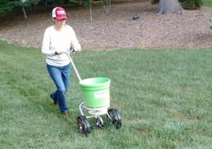 Woman spreading fertilizer.