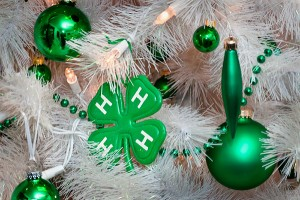 4H Christmas2