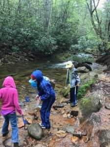 """""""4-Hers and the 4-H Agent learning about water quality in a stream at Lake James State Park."""""""