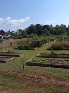 Unity Park and Community Gardens in Lenoir has raised beds for rent, a walking trail, and a small orchard.