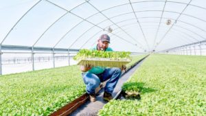 Cover photo for New Program Addresses the Business of Farming