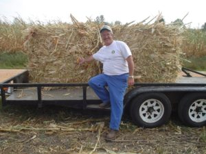 Former NC Department of Agriculture Regional Agronomist, Lynn Howard, is posing for a picture in front of corn stalks. During the 2007 drought, hay was limited throughout the region. Farmers baled corn stalks to feed to cattle. This was an NC Cooperative Extension and NC Cooperative Extension initiated effort.