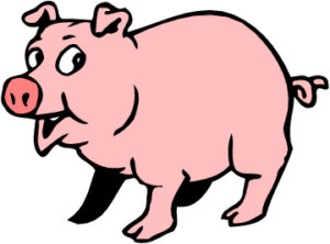 Image of a pig