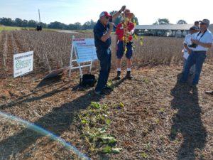 soybean field day