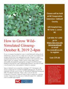 Ginseng Workshop Flyer