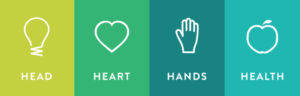 Head, Heart Hands and Health graphic