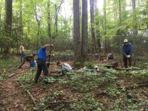 Cover photo for Online Woodland Stewards Program