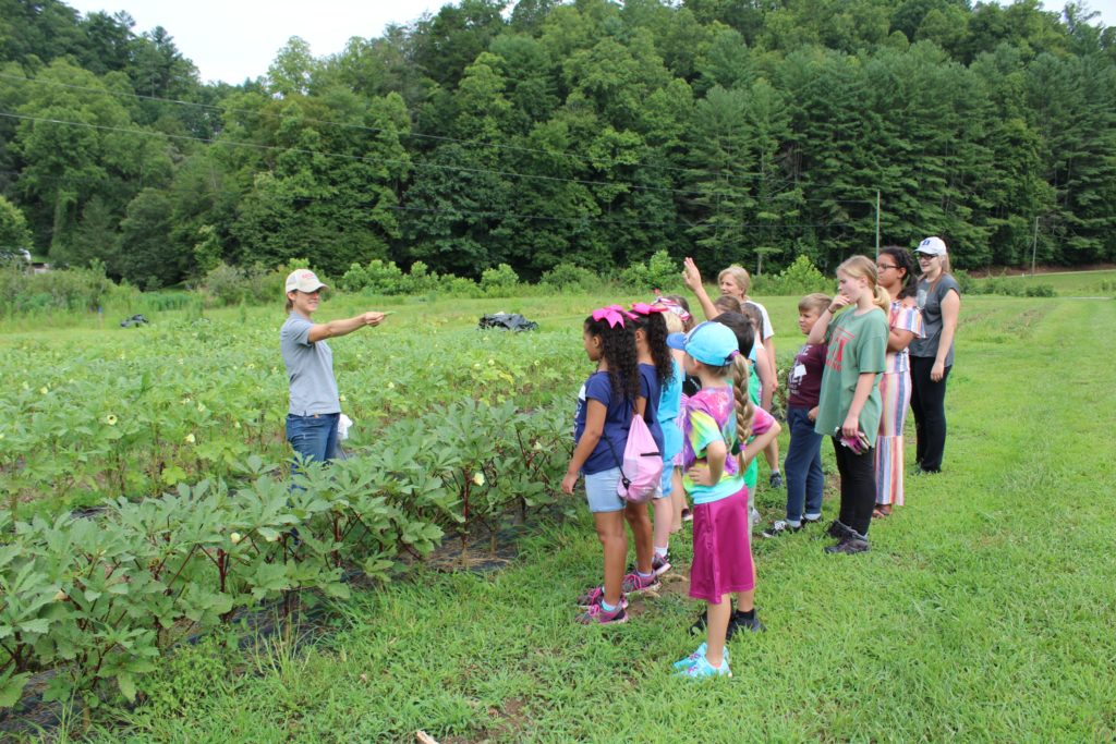 At a 4-H farm-to-fork summer program, Eli Snyder, Wilkes County horticulture Extension Agent, takes questions from youth about vegetable crops being grown.