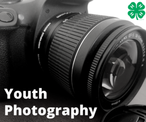 Cover photo for Basic Photography - 4-H Spark Activity for Youth