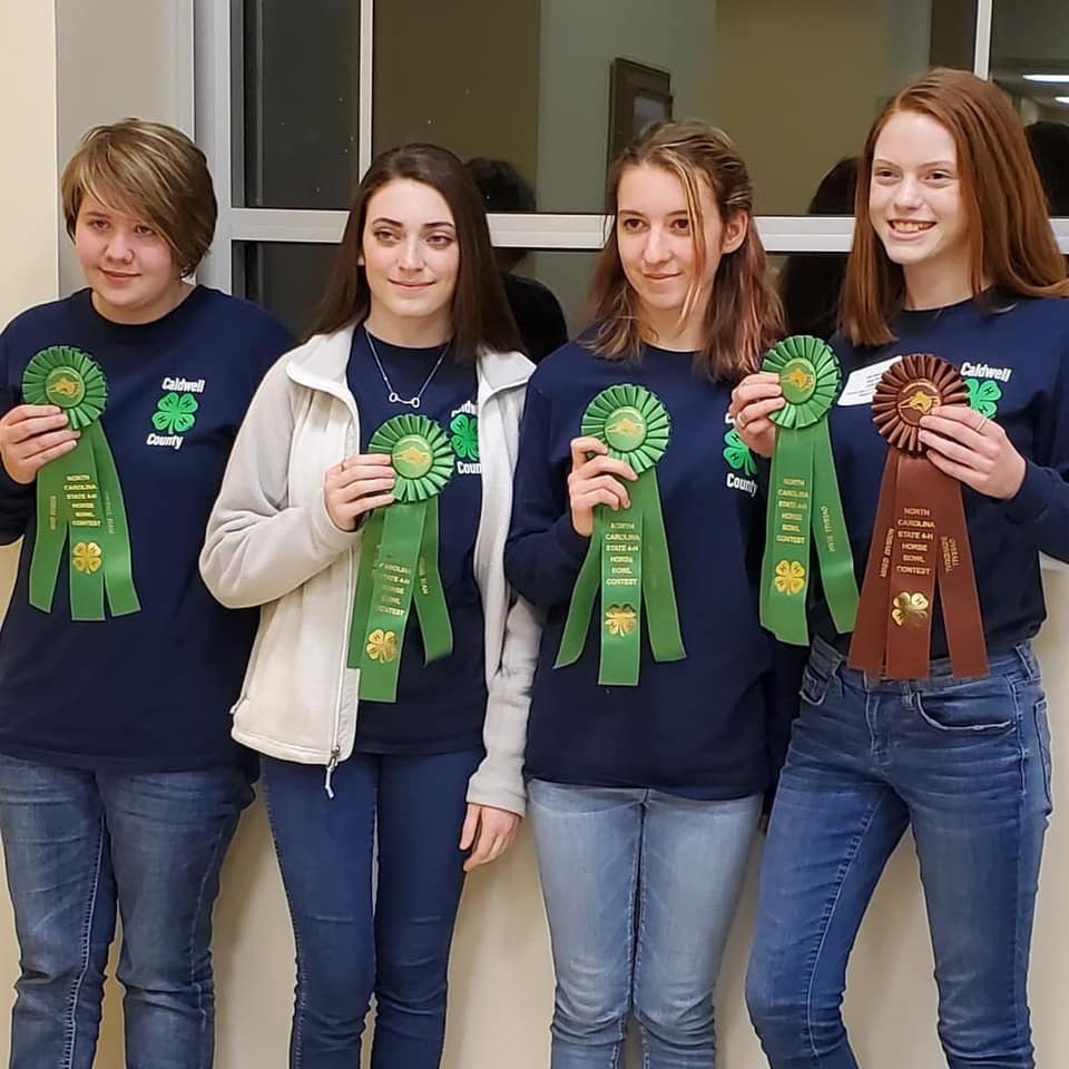 horsebowl participants