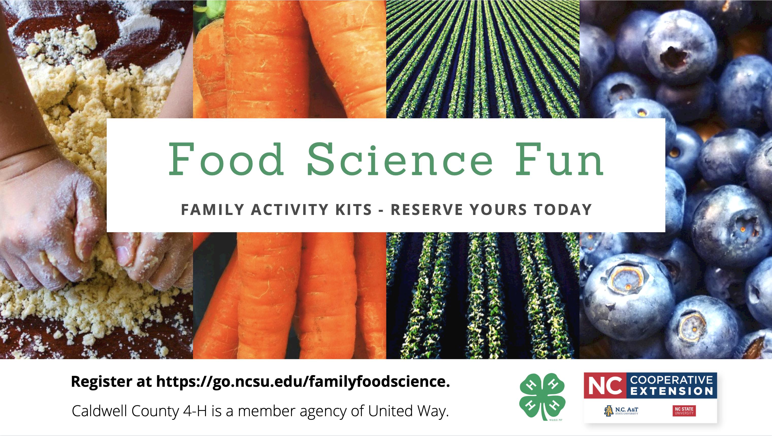 Food Science Fun!