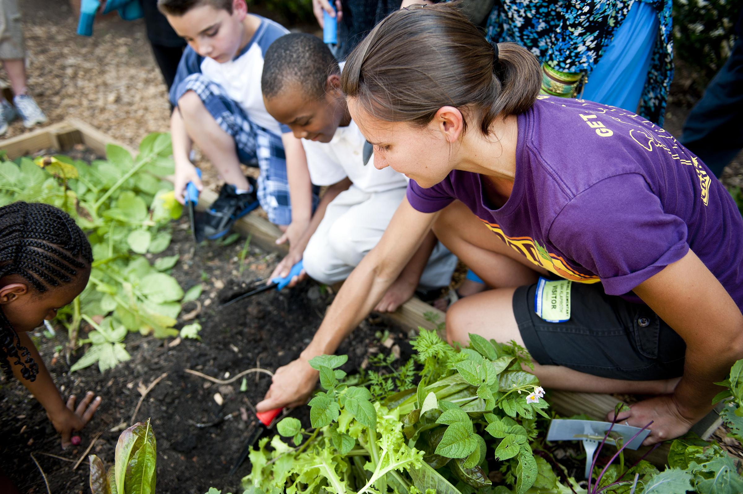Volunteer with youth gardening program.