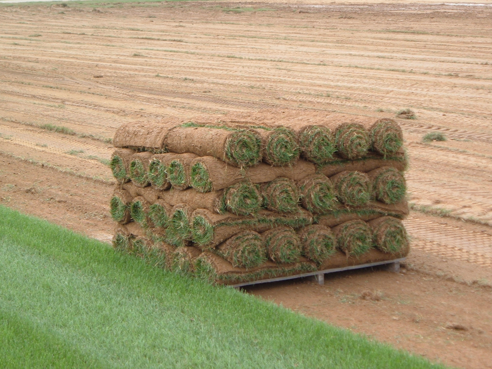 A pallet of sod ready for shipment. Most pallet sizes are commonly sold in ranges between 400, 450, or 500 sq. ft. in size. (Credit: Max Wahrhaftig)