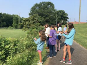 Participants pause during a walk at Redwood Park to record observations of what they see or hear during a 4-H session.